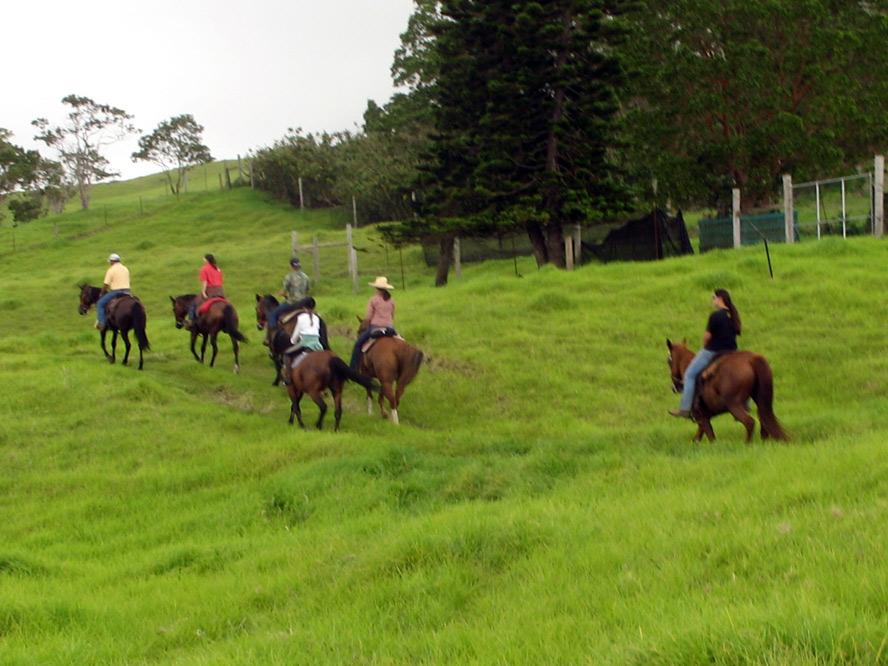 riders-ulu