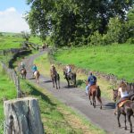 {Click to Enlarge} Sixty riders and their horses enjoyed a 10 mile ride from Thompson Road to the Fleming Arboretum